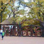 szarvasi-arboretum